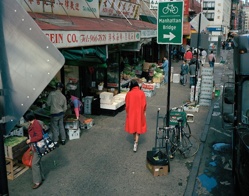 New York Chinatown 2012